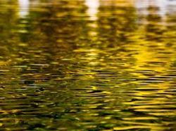 Baja-Gemenc-Mohács vízitúra kis víznél